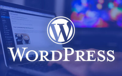 WordPress : Référencement wordpress pour les nuls